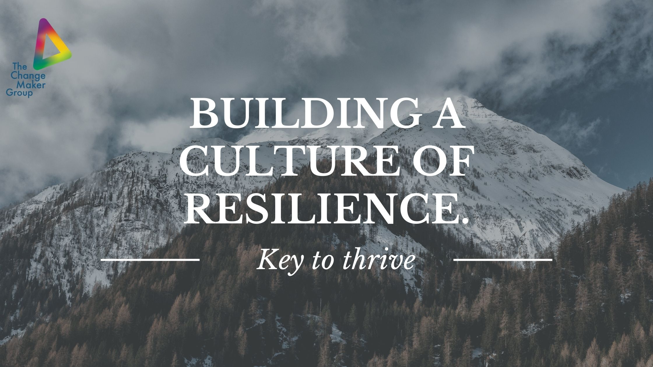 Building a Resilient Organisational Culture