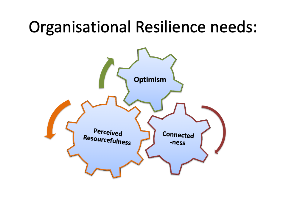 How leaders build their Resilient Organisations